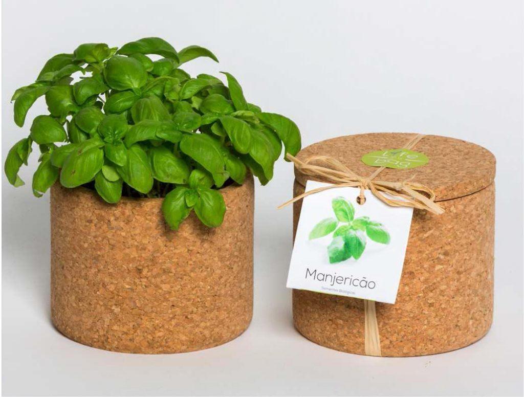 GROW-cork-pot