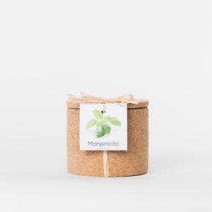 Cork grow pot