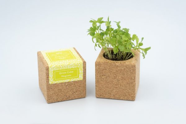 Cork grow cube